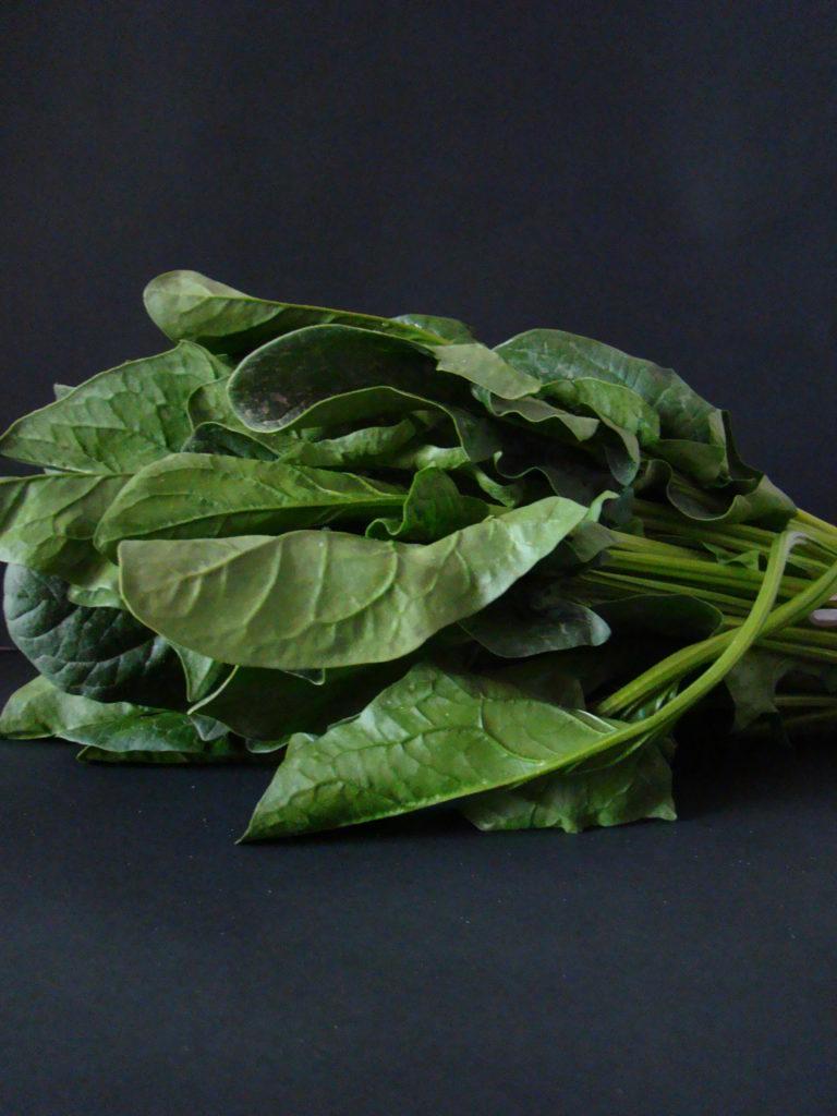 Vegetarian Mushroom and Spinach Lasagna